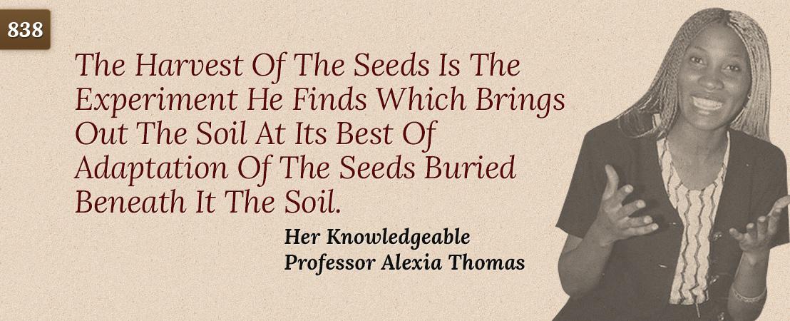 quote 838